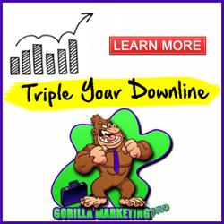 Gorilla Marketing